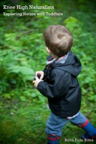 Exploring Nature with Toddlers